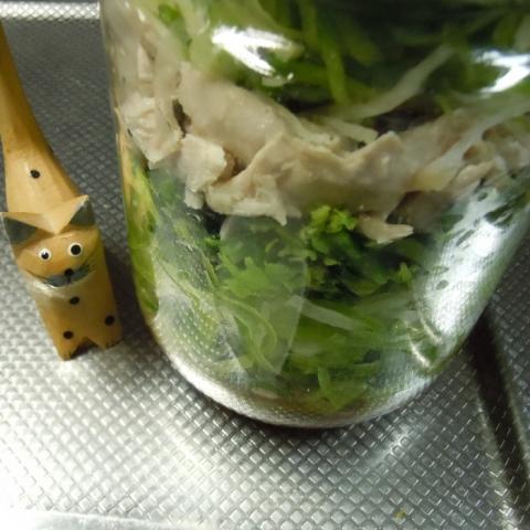 緑大根で簡単作り置きできる中華風サラダ