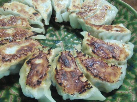 春キャベツと新生姜の餃子