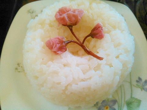母の日に☆桜花でカーネーション☆ライス